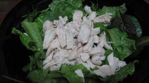 ベビーリーフと鳥のムネ肉のサラダ